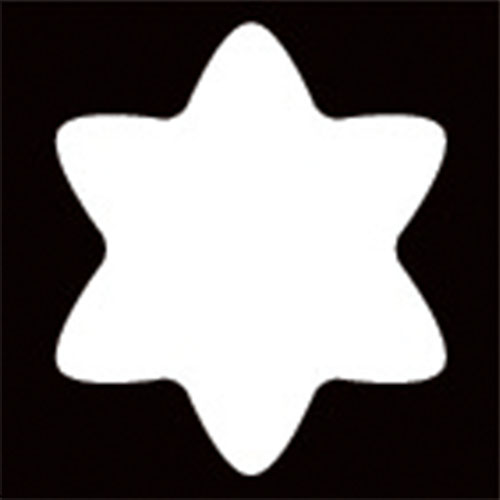 先端形状:Torx